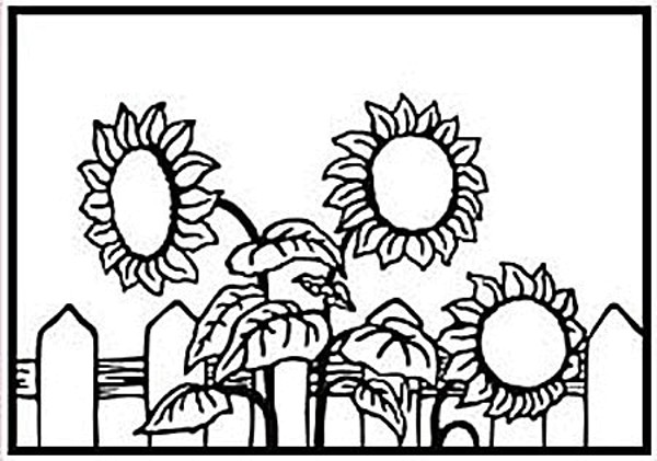 Sonnenblumen / sunflower - Prägeschablone / Embossing Folder